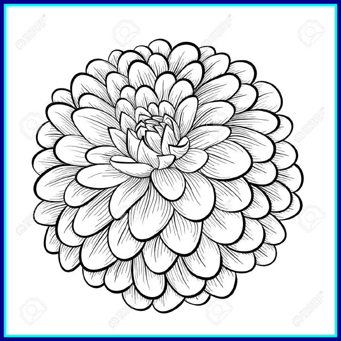 Flower Design Background Drawing Flowers Healthy