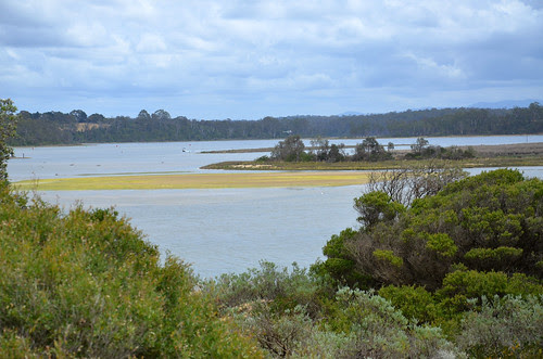 Lake Tyers Beach 34