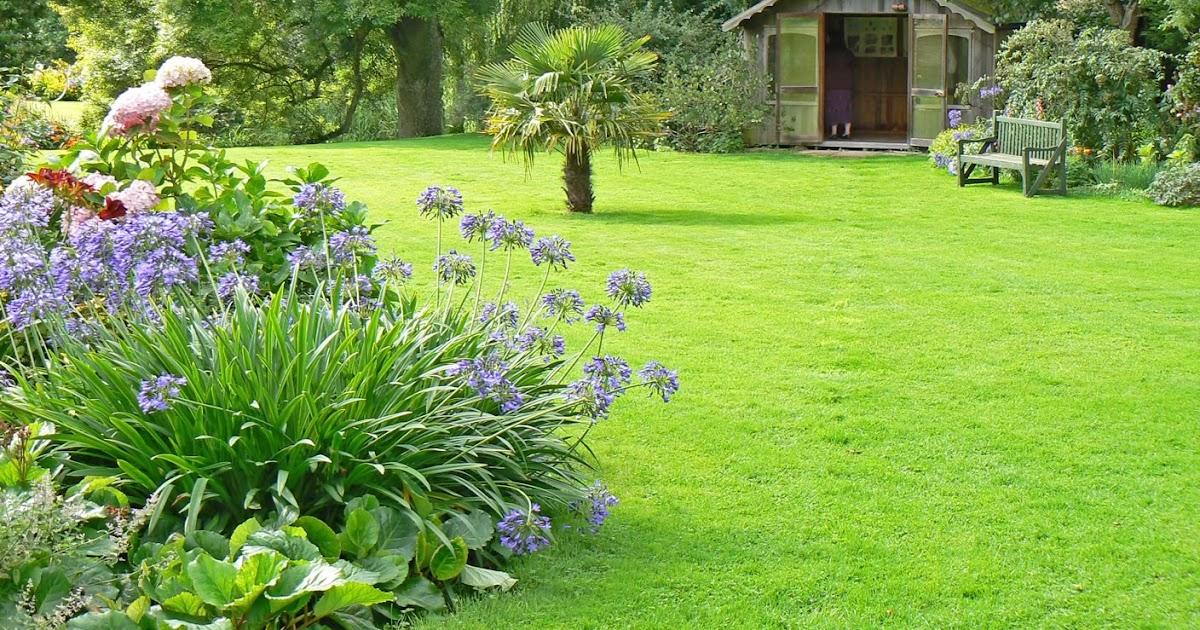Giardini arredamento prato verde giardino for Giardino sempre verde