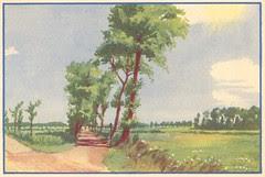 paysage ete