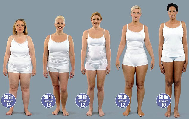 body fat percentage scales big w