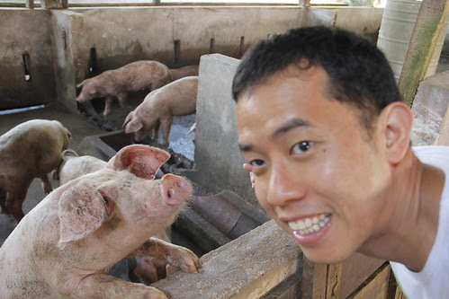 Ming Jin and a piglet