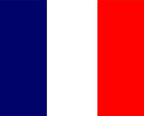 euro flag france myspace