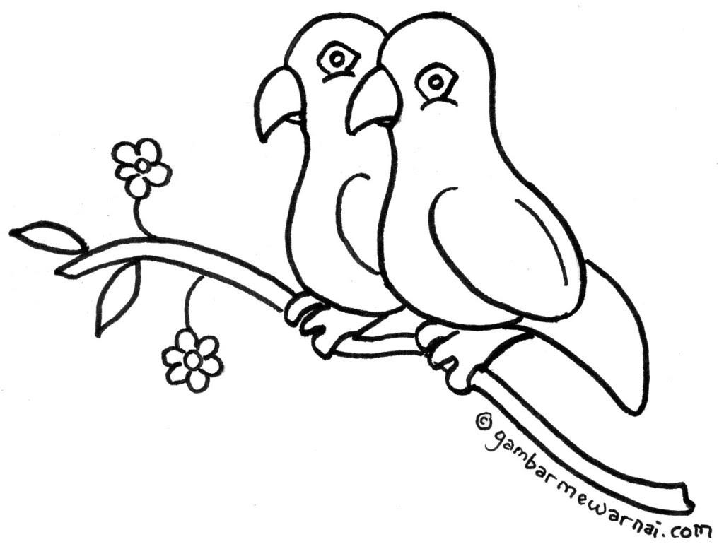 Buku Gambar Mewarnai Mewarnai Bunga Anggrek Gambar Mewarnai Share