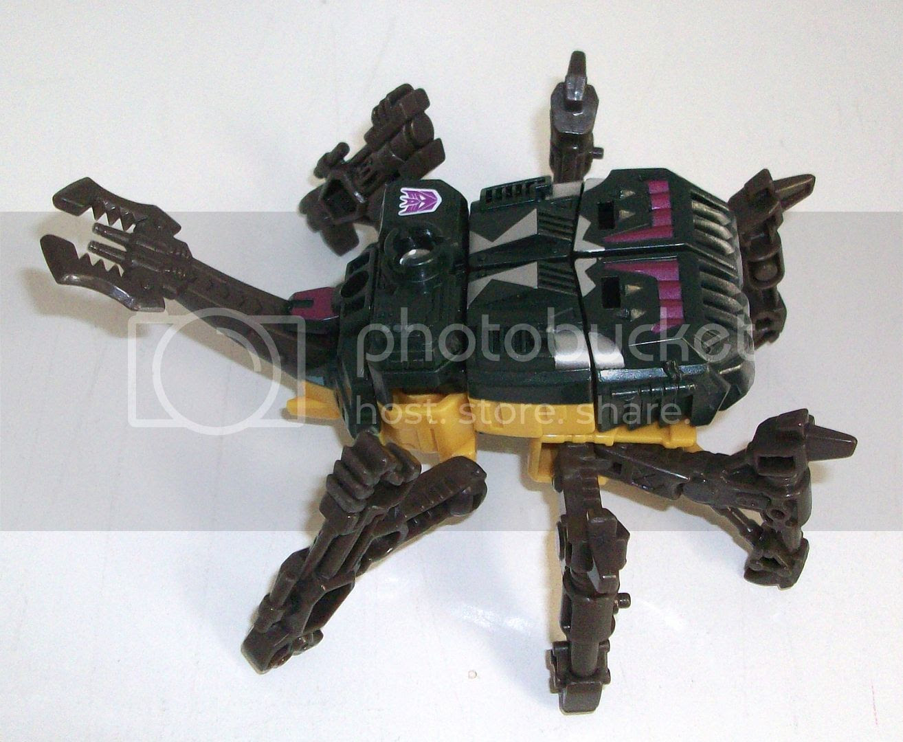 Energon Insecticon photo 100_5038_zpsc252306e.jpg