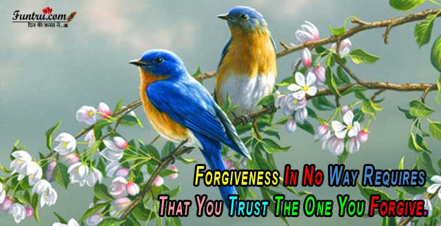 No Way Requires Forgiveness Quotes Hindi Quotes