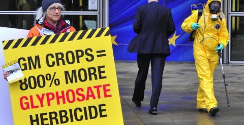 Varios activistas protestan ante la Comisión Europea por la autorización de transgénicos resistentes al glifosato en 2012. - AFP
