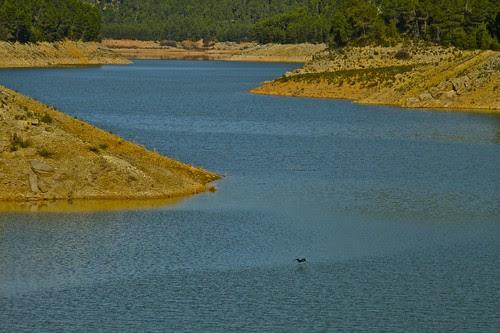 Parque Natural de las sierras de Cazorla, Segura y las Villas - 055