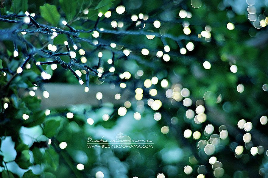 2.9, Fairy lights