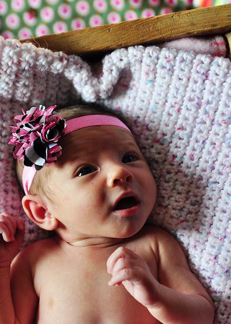 m.hoffman newborn