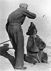 Польский солдат в Иране с медведем по имени Войтек