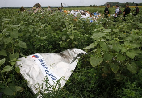 A piece of the wreckage of a Malaysia Airlines plane at the site of its crash.