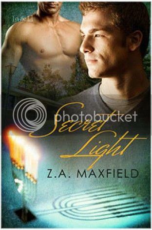 Secret Light Cover
