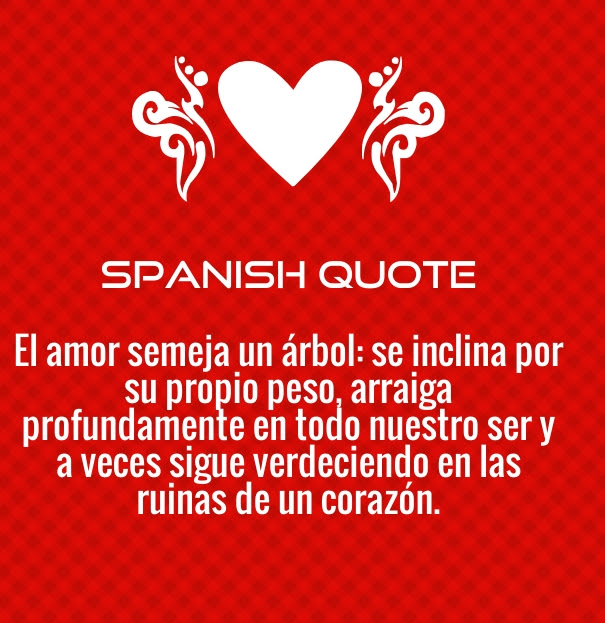 Love In Italian Translation: Love Quotes For Him In Spanish With English Translation