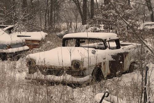 Snowy Ranchero