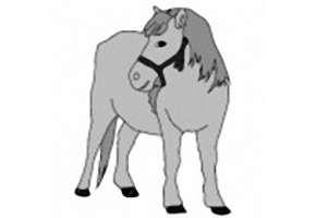 Pferde Ausmalbilder Kostenlos