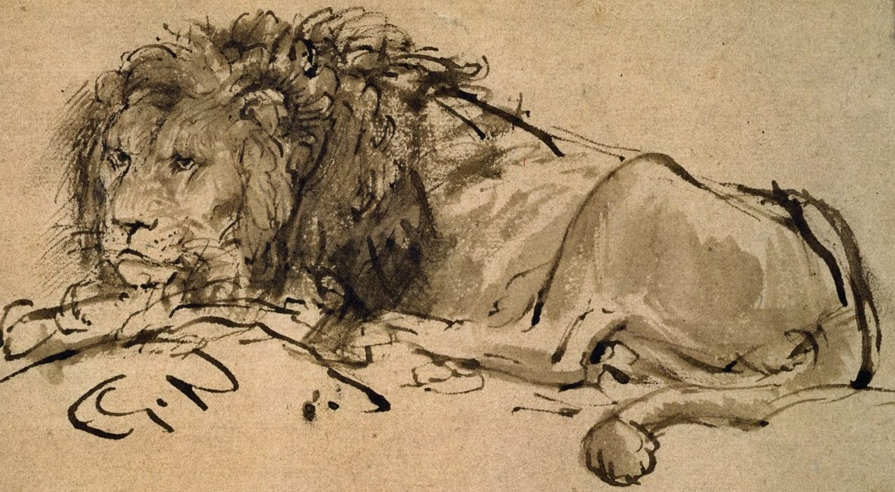Pen and wash lion by Rembrandt in the Louvre [Fonte: Wikimedia]