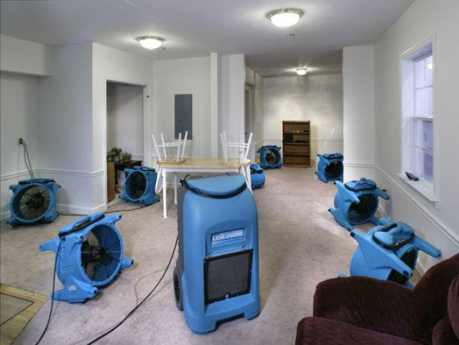 drying basement from Tanin Carpet, Tile Cleaning, Water Damage ...