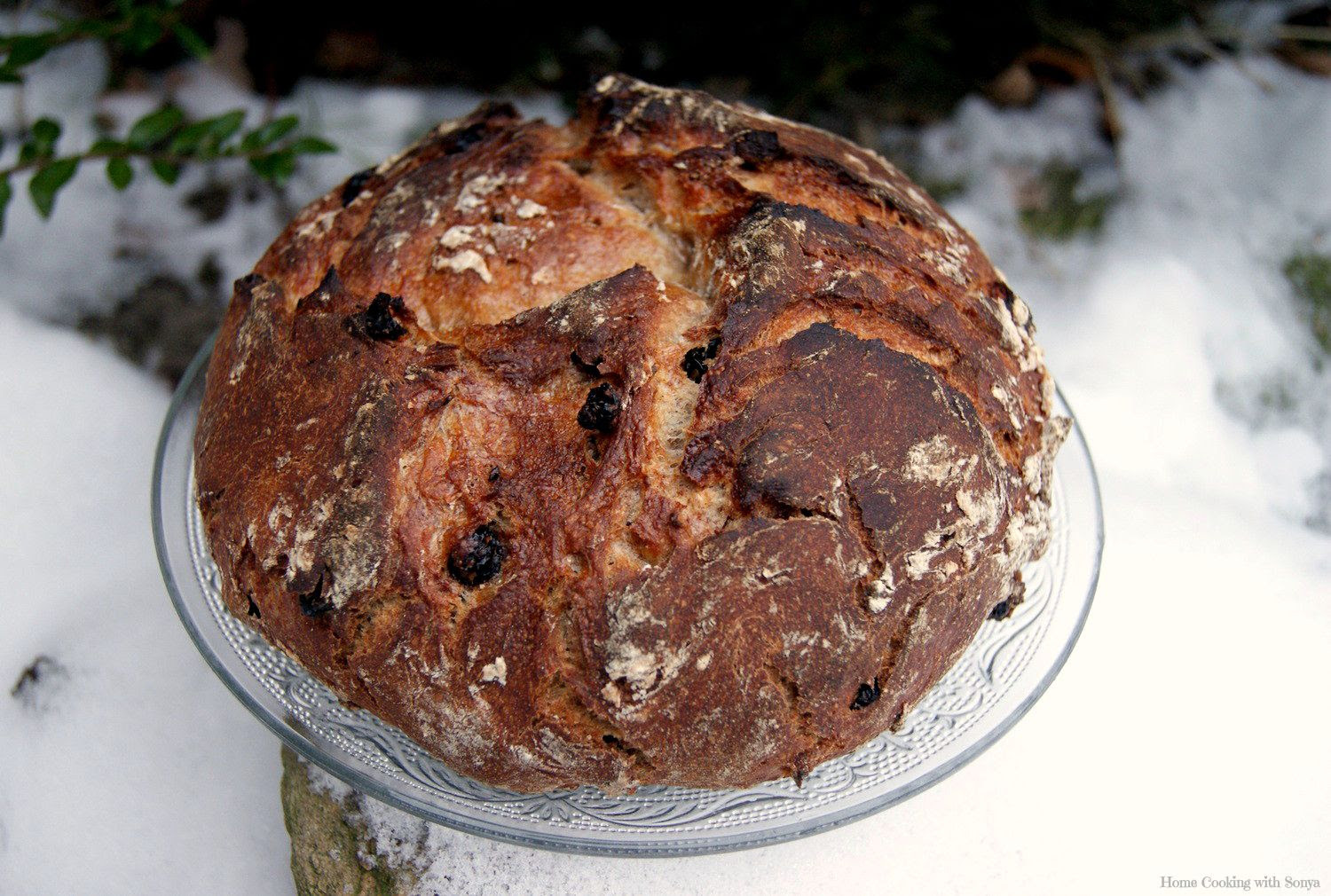 21.1, No-knead Honey Cinnamon Raisin Bread..My 1st dutch oven baked bread..it will not be my last.