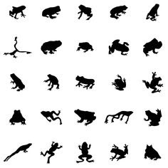 Frog Silhouette Tattoo At Getdrawingscom Free For Personal Use