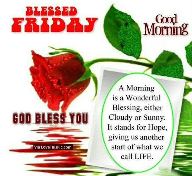 Blessed Friday Good Morning Quote Pictures Photos And Images For