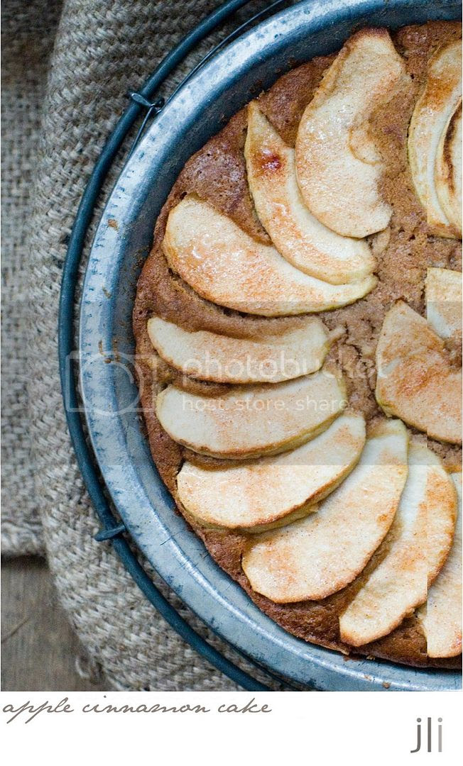 apple cinnamon cake photo blog-3_zps1ab1ed96.jpg