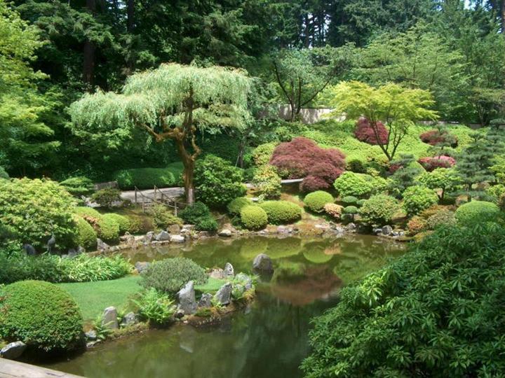 japan_kert_9_500515_17477