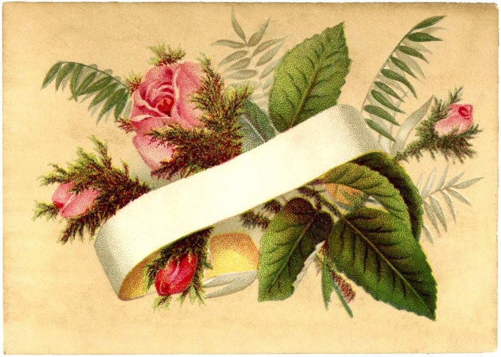 Moss Rose Calling Card