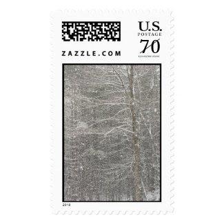 Snow Falling Stamp
