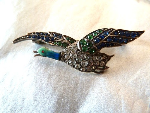 Jewel Bird