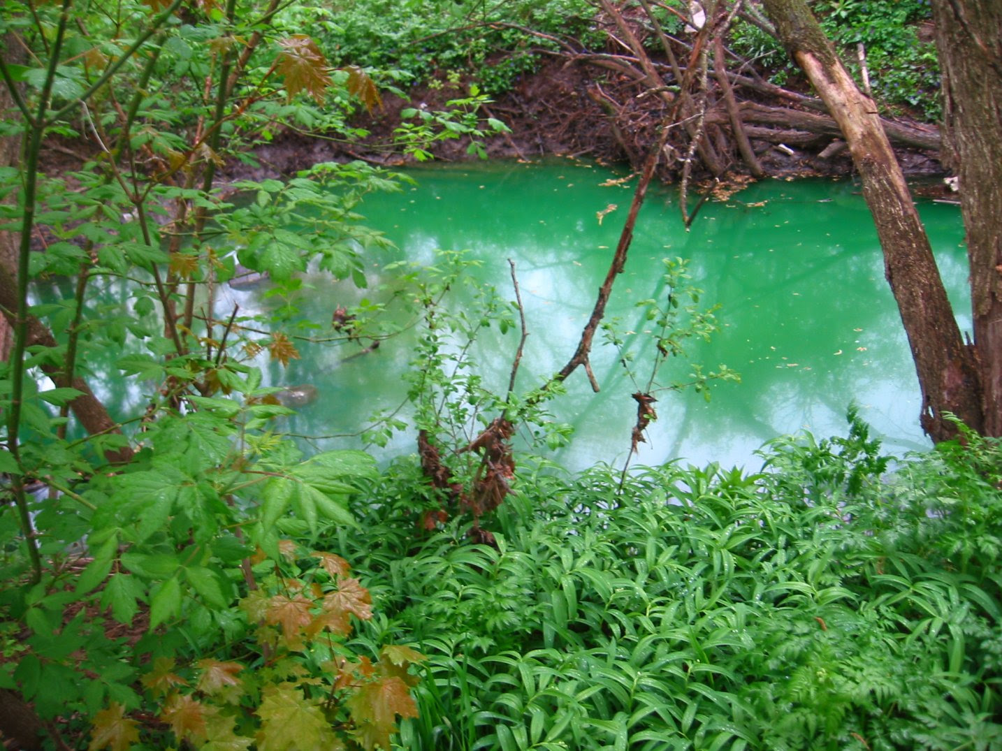 polluted Root River in Wisconsin