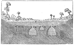 Section showing wells and chultuns below an aguada