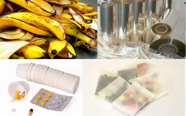 Pesquisadores estudam casca da banana como fonte para medicamentos e polímeros