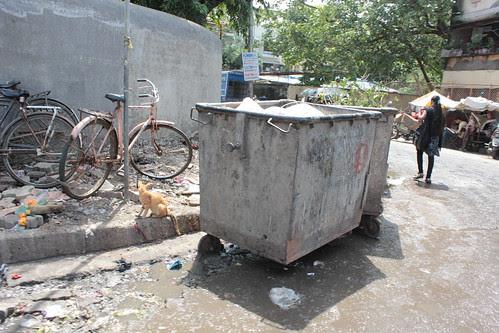 my art was born in a garbage bin..i shoot i pin ..i sin by firoze shakir photographerno1