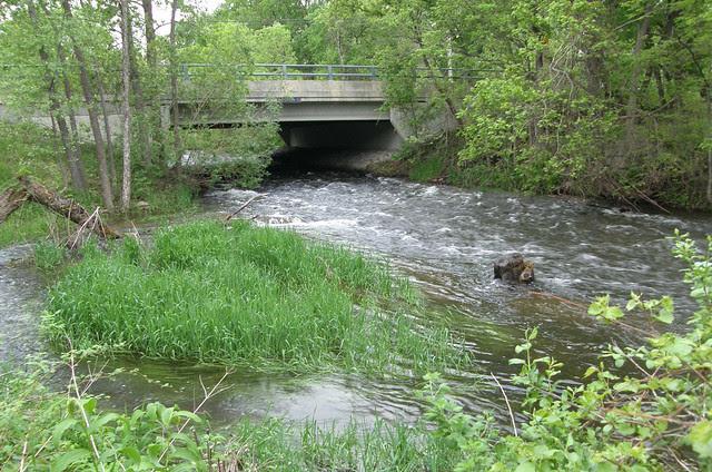 Minnehaha Creek in Minnetonka Mills