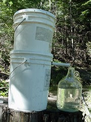 Water Filtration System Five Gallon Ideas