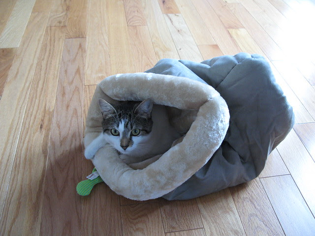 Kitty Sleeping Bag