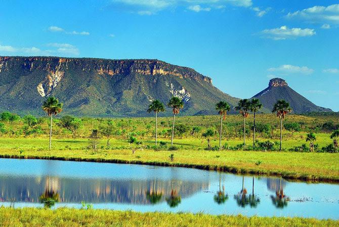 Resultado de imagem para Parque Estadual do Jalapão