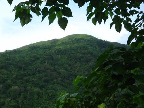 Bato mountain.