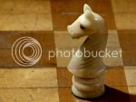Mbdortmund's chess knight photo