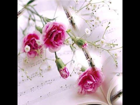 LA MUSICOTERAPIA Y LOS DUELOS