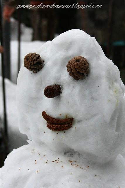 Compagno di neve