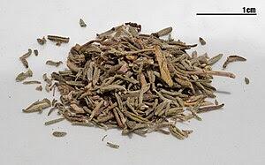Dried thyme (Thymus vulgaris). This is a focus...
