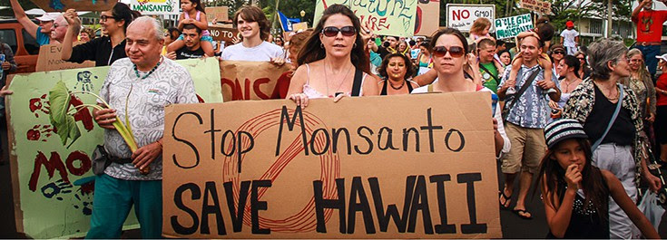 article-monsanto-protest-hawaii-gmo-735-265