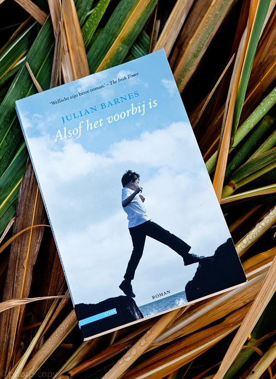 Book review julian barnes