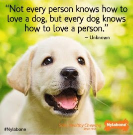 Dog And Owner Quotes. QuotesGram