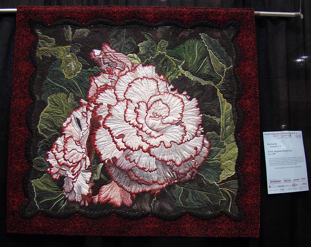 DSC06813 Begonia Picotee Lace - Pat Durbin