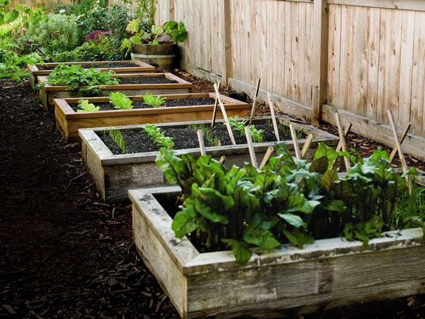30+ Creative DIY Raised Garden Bed Ideas And Projects --> How to Build and Install Raised Garden Beds