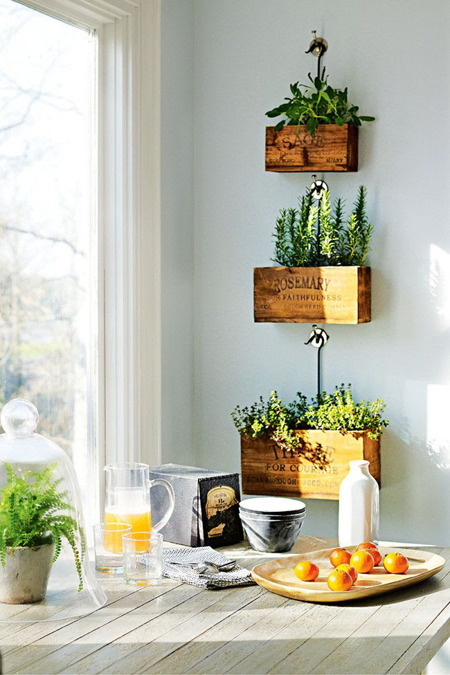 I love this - Indoor Plant Ideas   The Polished Project