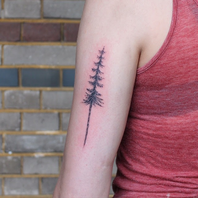 30+ Simple and Easy Pine Tree Tattoo Designs for Everyone
